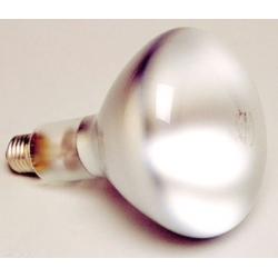 Ampoule de rechange pour...